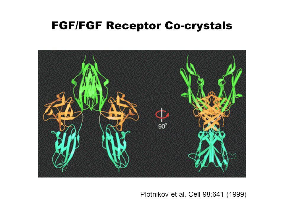 FGF/FGF Receptor Co-crystals Plotnikov et al. Cell 98:641 (1999)