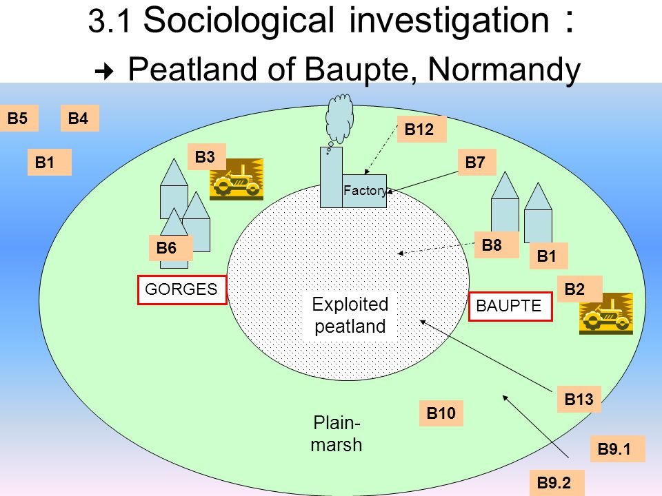 3.1 Sociological investigation : Peatland of Baupte, Normandy Exploited peatland Plain- marsh BAUPTE GORGES Factory B1 B8 B12 B7 B13 B6 B9.1 B9.2 B10 B1 B4B5 B3 B2