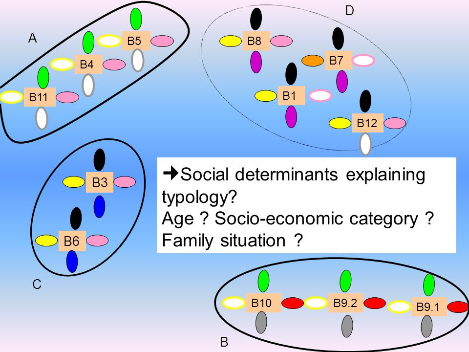 B11 B5 B4 A B9.2 B9.1 B10 B B6 B3 C D B12 B7 B8 B1 Social determinants explaining typology.