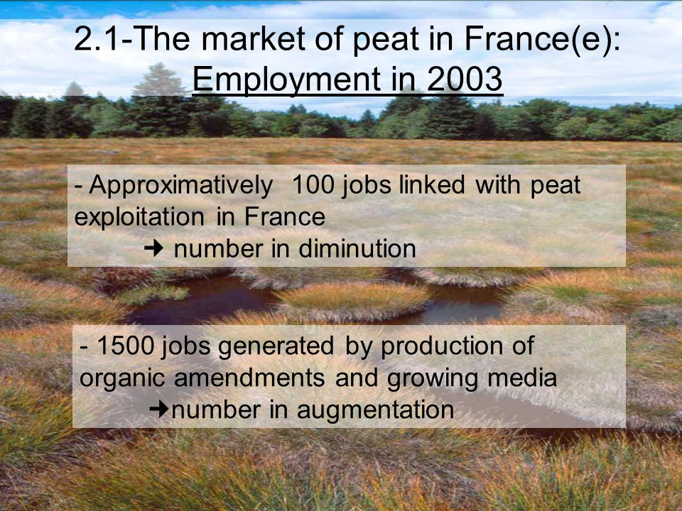 2.1-The market of peat in France(e): Employment in 2003 - Approximatively 100 jobs linked with peat exploitation in France number in diminution - 1500 jobs generated by production of organic amendments and growing media number in augmentation