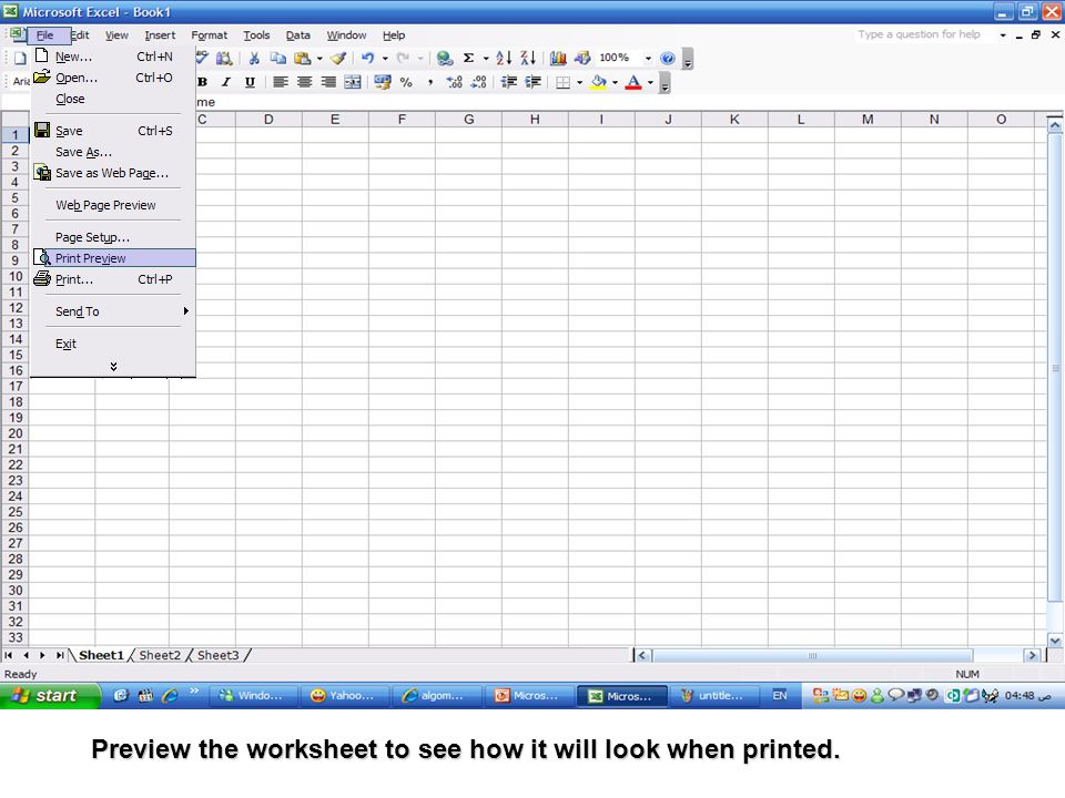 Preview the worksheet to see how it will look when printed.