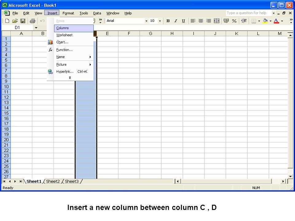 Insert a new column between column C, D