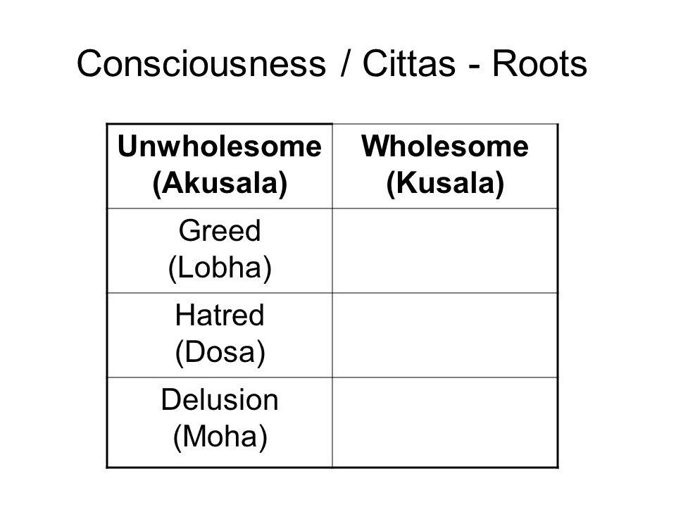 Consciousness / Cittas - Roots Unwholesome (Akusala) Wholesome (Kusala) Greed (Lobha) Non-Greed (Alobha) Hatred (Dosa) Non-Hatred (Adosa) Delusion (Mo