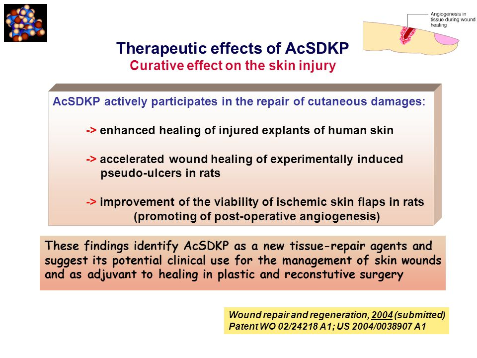 Therapeutic effects of AcSDKP Curative effect on the skin injury AcSDKP actively participates in the repair of cutaneous damages: -> enhanced healing