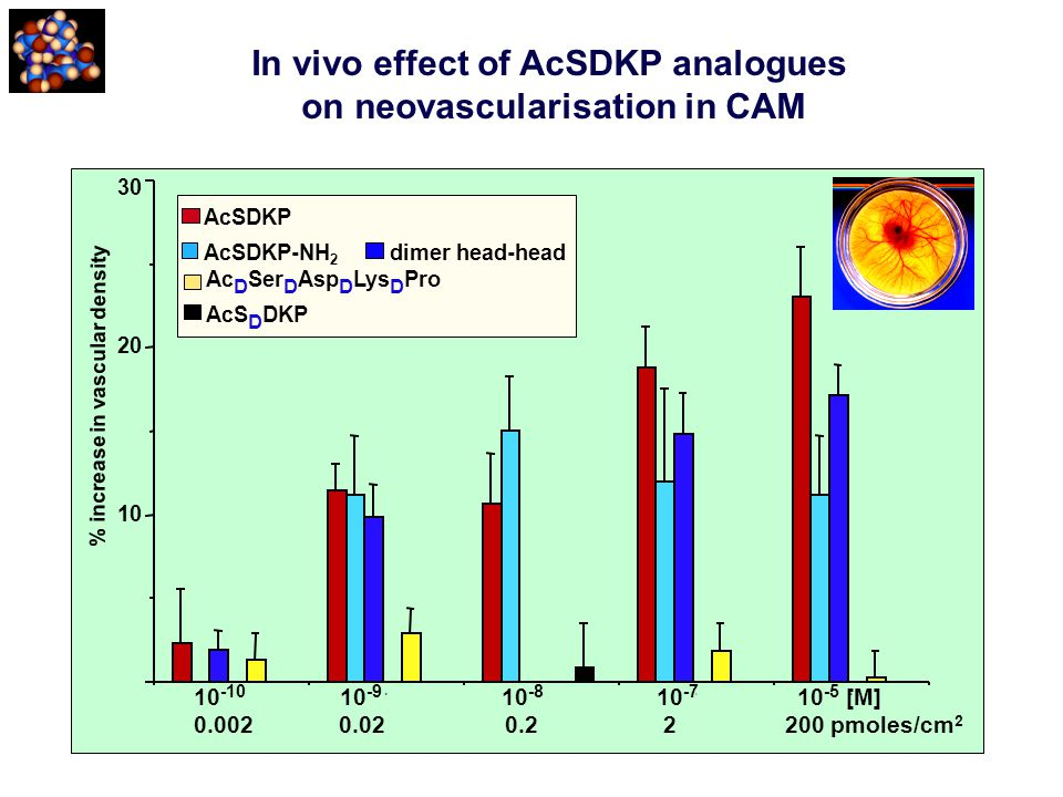 In vivo effect of AcSDKP analogues on neovascularisation in CAM 10 -10 10 -9 10 -8 10 -7 10 -5 [M] 0.002 0.02 0.2 2 200 pmoles/cm 2 AcSDKP AcSDKP-NH 2