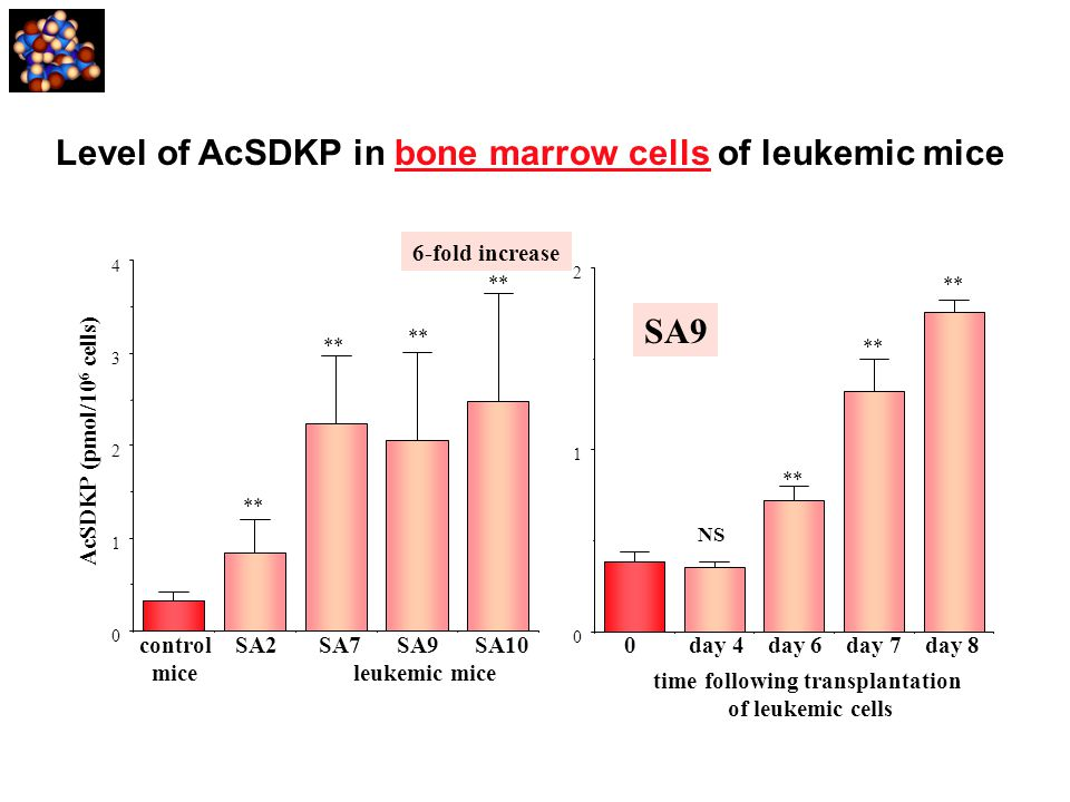 Level of AcSDKP in bone marrow cells of leukemic mice 0 1 2 time following transplantation of leukemic cells 0 day 4 day 6 day 7 day 8 NS SA9 ** 0 1 2