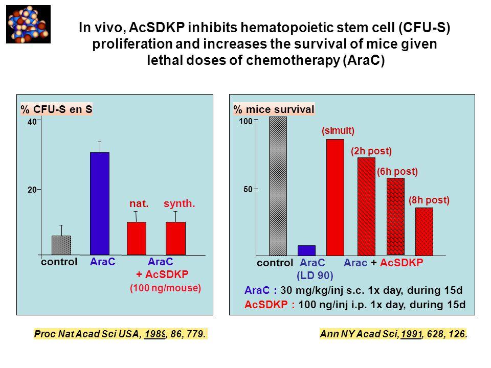 AraC : 30 mg/kg/inj s.c. 1x day, during 15d AcSDKP : 100 ng/inj i.p. 1x day, during 15d 100 50 control AraC Arac + AcSDKP (LD 90) % mice survival (sim