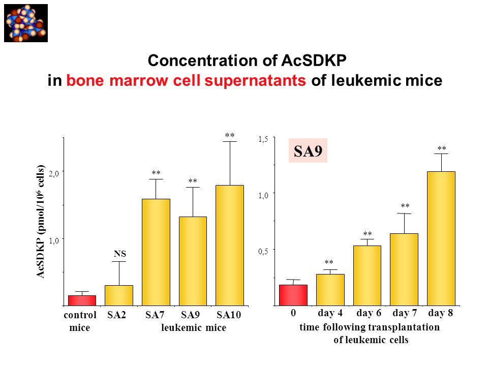 Concentration of AcSDKP in bone marrow cell supernatants of leukemic mice 1,0 2,0 AcSDKP (pmol/10 6 cells) control SA2 SA7 SA9 SA10 mice leukemic mice