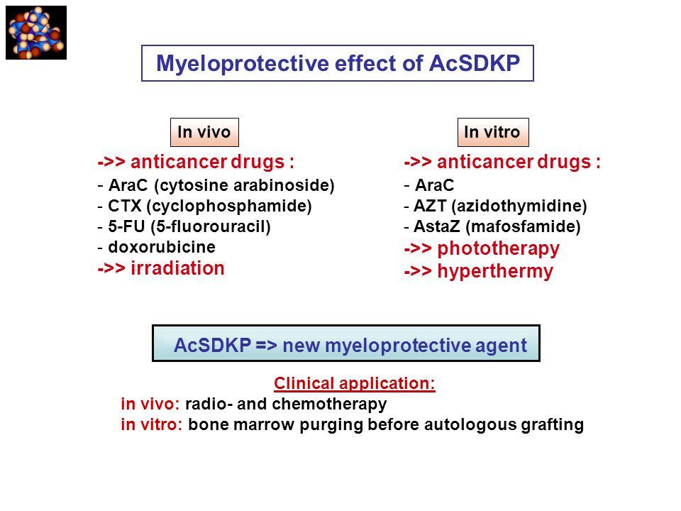 ->> anticancer drugs : - AraC (cytosine arabinoside) - CTX (cyclophosphamide) - 5-FU (5-fluorouracil) - doxorubicine ->> irradiation ->> anticancer dr