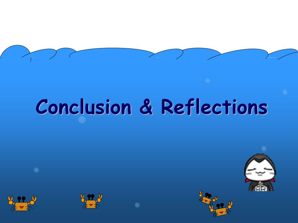Conclusion & Reflections