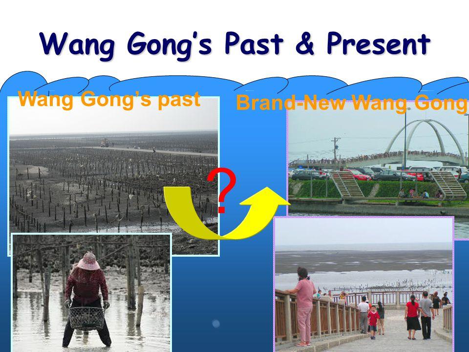 Wang Gong's Past & Present Brand-New Wang Gong Wang Gong's past