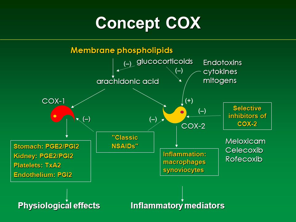 Membrane phospholipids glucocorticoids Endotoxinscytokinesmitogens (–) (–) COX-1 COX-2 (+) arachidonic acid Stomach: PGE2/PGI2 Kidney: PGE2/PGI2 Platelets: TxA2 Endothelium: PGI2 Inflammation: macrophages synoviocytes ClassicNSAIDs Selective inhibitors of COX-2 MeloxicamCelecoxibRofecoxib Physiological effects Inflammatory mediators Concept COX