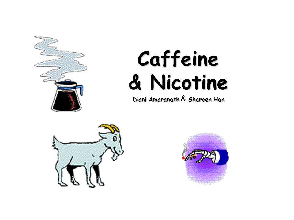 Caffeine & Nicotine Diani AmaranathShareen Han Diani Amaranath & Shareen Han