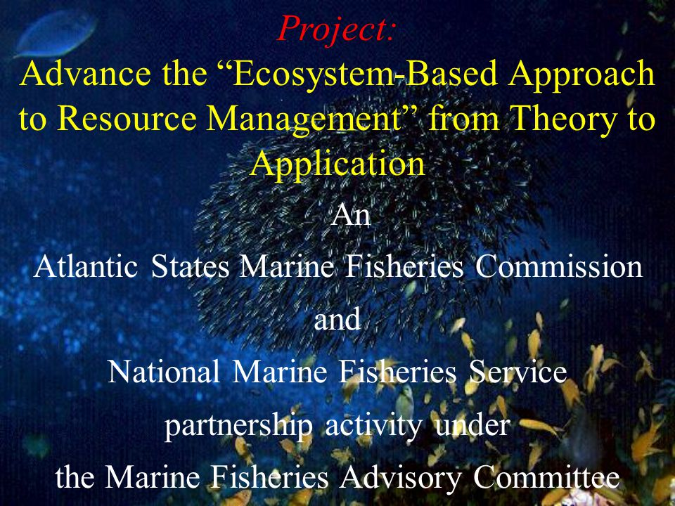 This Project is building on: The Ecosystem Approach: Healthy Ecosystems and Sustainable Economics by the Interagency Ecosystem Management Task Force (1995) Ecosystem-Based Fishery Management by the Ecosystem Principles Advisory Panel (1999) Experiences from various applications