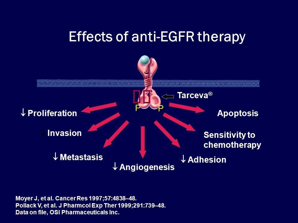  Tarceva ®  Proliferation  Invasion  Metastasis  Angiogenesis  Apoptosis  Adhesion  Sensitivity to chemotherapy Effects of anti-EGFR therapy  Moyer J, et al.