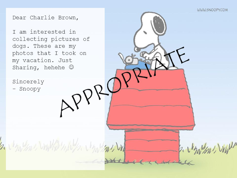 Dear Charlie Brown, I am interested in collecting pictures of dogs.