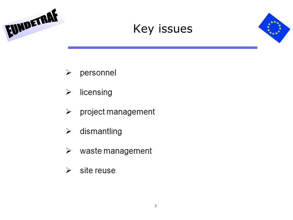 8 Basics for the project analysis fresh and spent fuel management waste management dismantling strategy mass flow logistic post operation personnel strategy site reuse options  define main dependencies between activities  define mile stones and overall project life time  prepare key decision plan (with arguments)