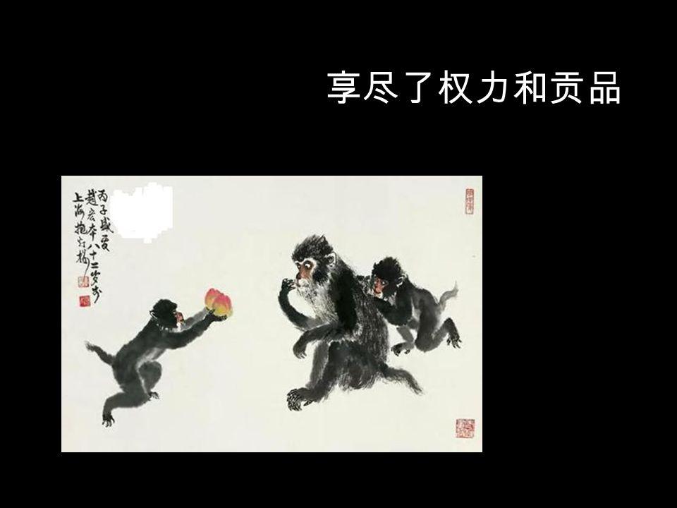 做上了猴王真过瘾