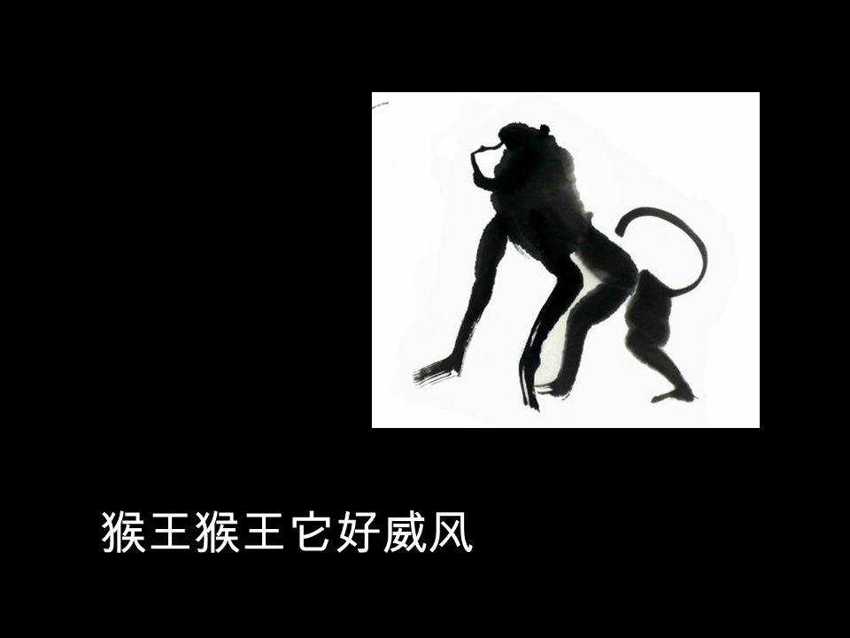 有一只猴王是它们的头儿