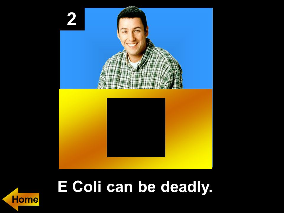 2 E Coli can be deadly.