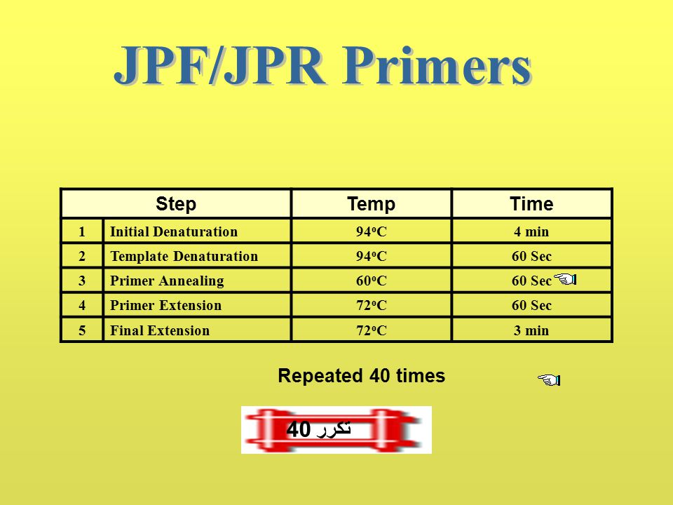 StepTempTime 1Initial Denaturation93 o C5 min 2Template Denaturation90 o C60 Sec 3Primer Annealing60 o C60 Sec 4Primer Extension72 o C60 Sec 5Final Ex