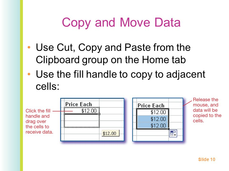 Copy and Move Data Use Cut, Copy and Paste from the Clipboard group on the Home tab Use the fill handle to copy to adjacent cells: Slide 10