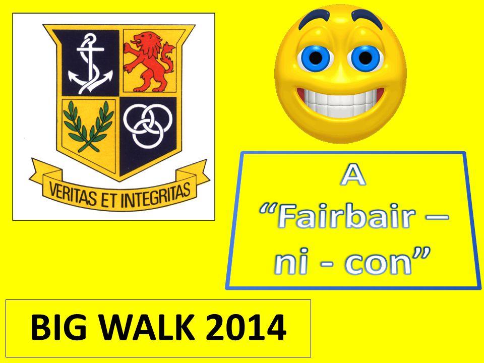 BIG WALK 2014
