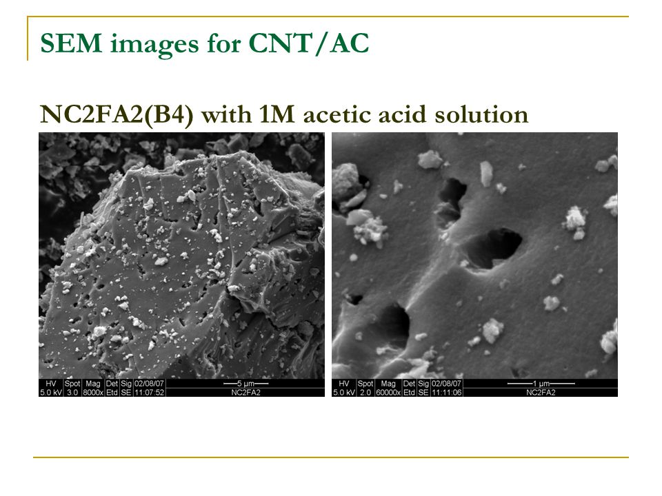 SEM images for CNT/AC NC2FA2(B4) with 1M acetic acid solution