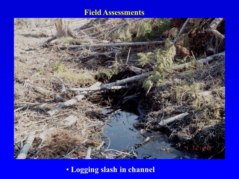 Logging slash in channel Field Assessments