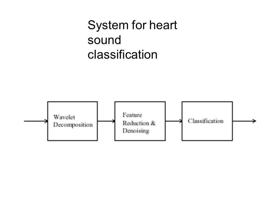 System for heart sound classification