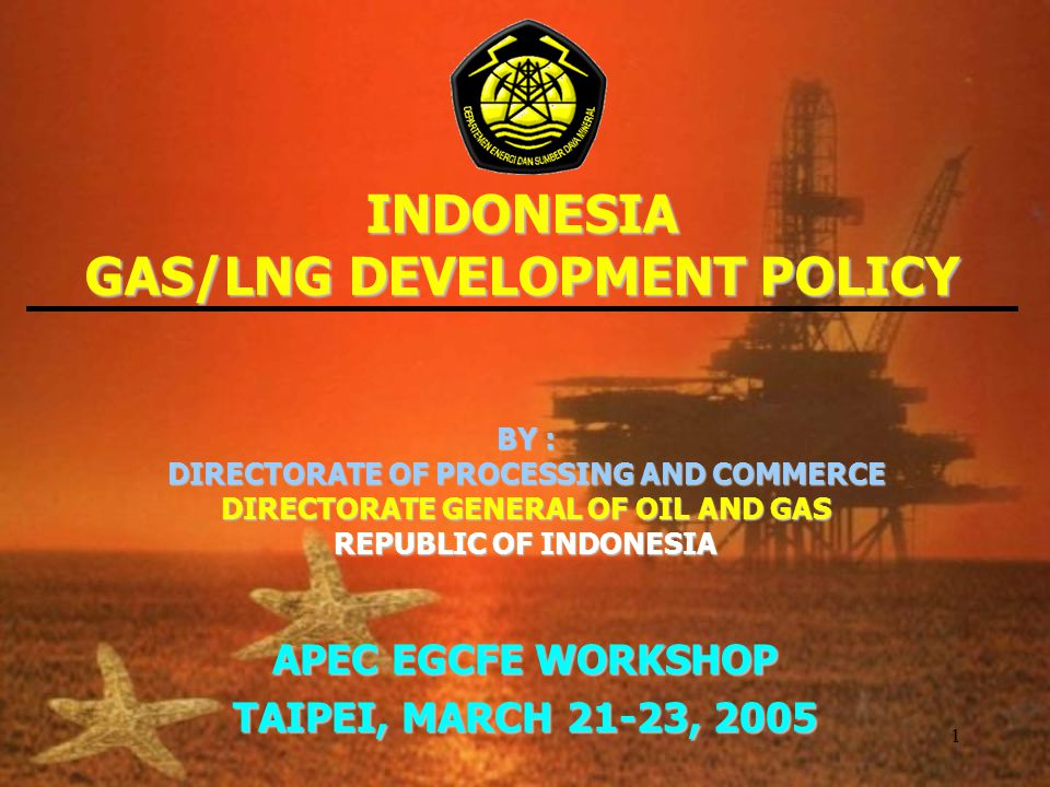 1 INDONESIA GAS/LNG DEVELOPMENT POLICY BY : DIRECTORATE OF PROCESSING AND COMMERCE DIRECTORATE GENERAL OF OIL AND GAS REPUBLIC OF INDONESIA APEC EGCFE WORKSHOP TAIPEI, MARCH 21-23, 2005