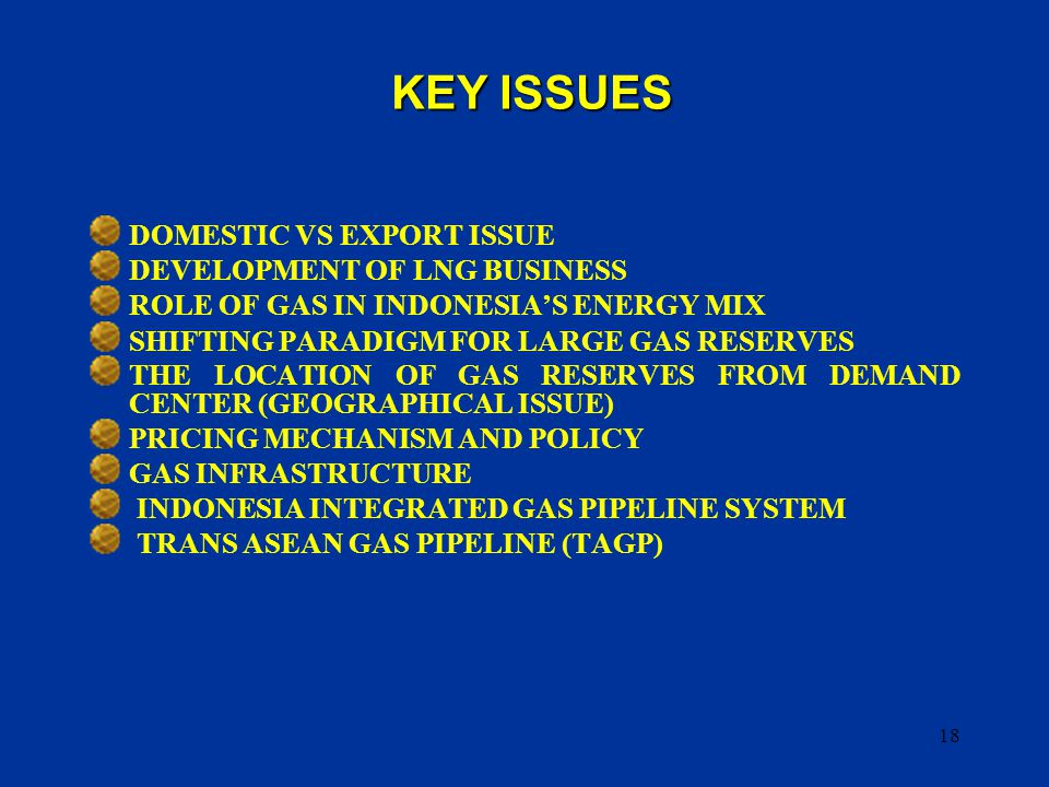 18 DOMESTIC VS EXPORT ISSUE DEVELOPMENT OF LNG BUSINESS ROLE OF GAS IN INDONESIA'S ENERGY MIX SHIFTING PARADIGM FOR LARGE GAS RESERVES THE LOCATION OF GAS RESERVES FROM DEMAND CENTER (GEOGRAPHICAL ISSUE) PRICING MECHANISM AND POLICY GAS INFRASTRUCTURE INDONESIA INTEGRATED GAS PIPELINE SYSTEM TRANS ASEAN GAS PIPELINE (TAGP) KEY ISSUES