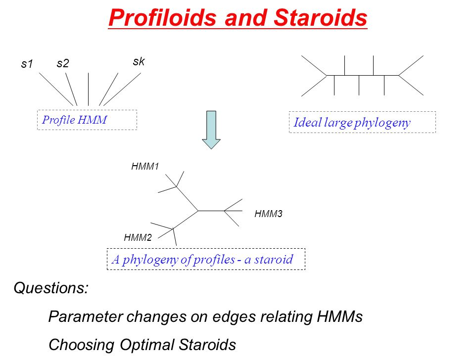 Profiloids and Staroids A phylogeny of profiles - a staroid HMM1 HMM2 HMM3 Profile HMM s1 s2 sk Ideal large phylogeny Questions: Parameter changes on edges relating HMMs Choosing Optimal Staroids