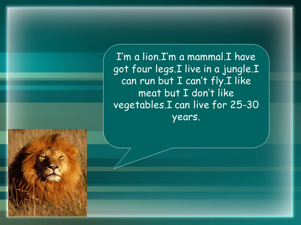 I'm a lion.I'm a mammal.I have got four legs.I live in a jungle.I can run but I can't fly.I like meat but I don't like vegetables.I can live for 25-30 years.