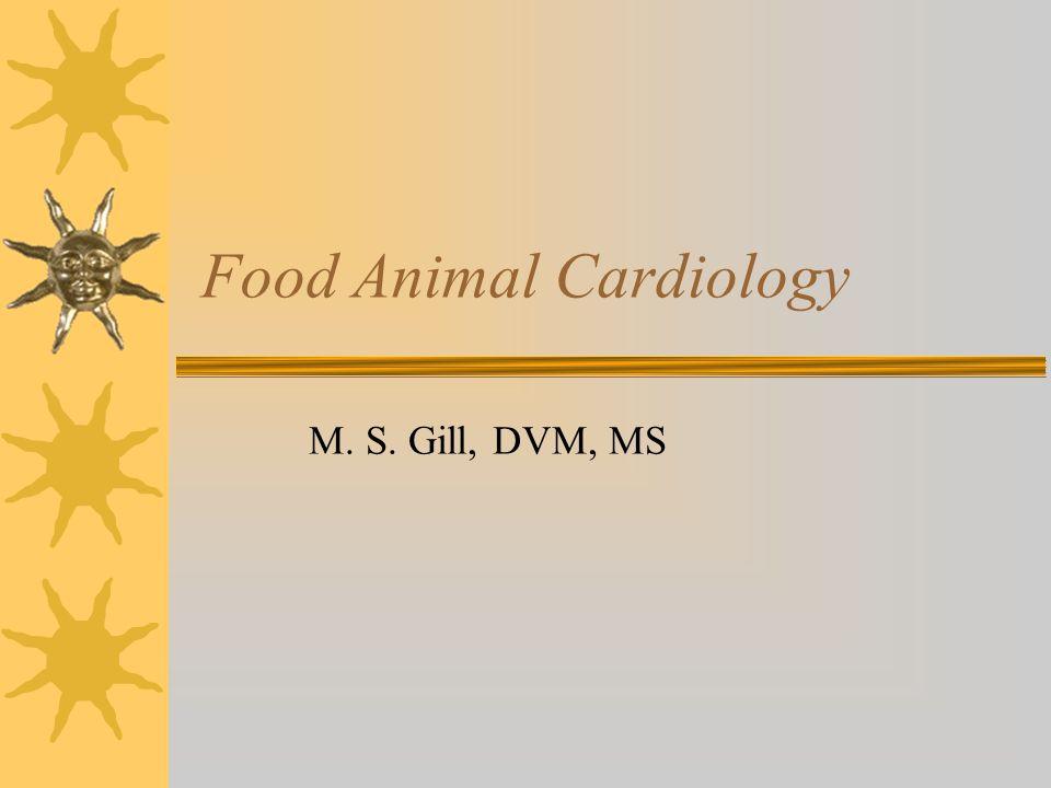 Food Animal Cardiology M. S. Gill, DVM, MS