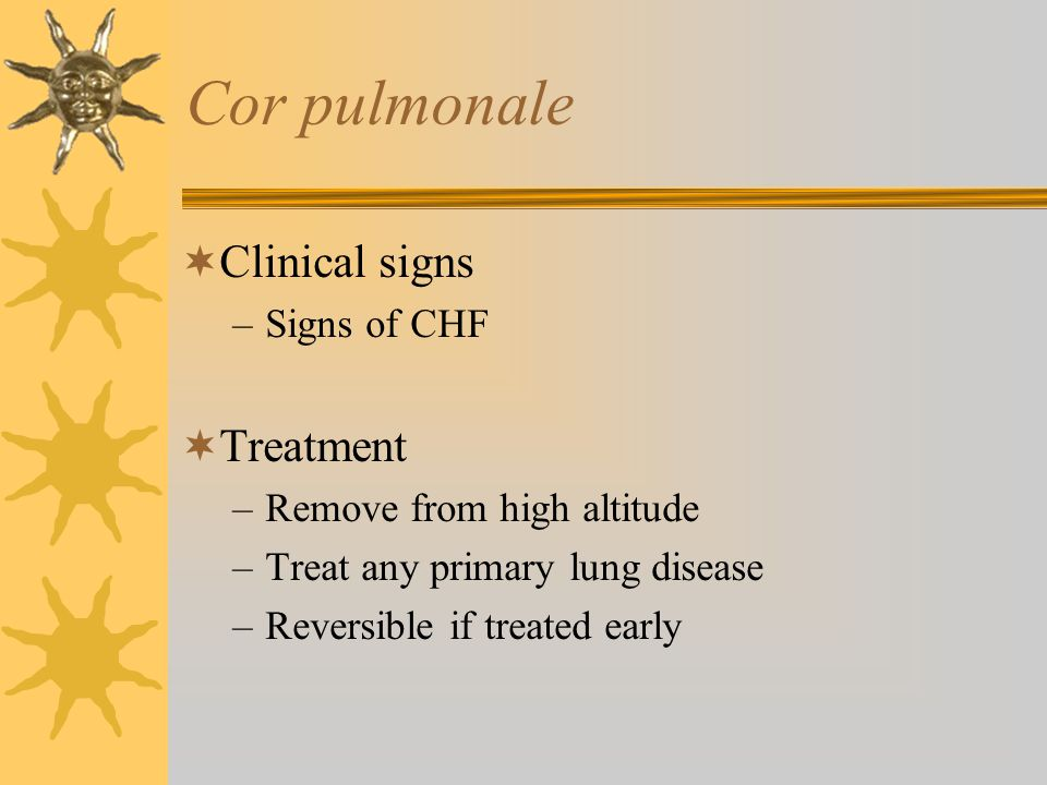 Cor pulmonale  Clinical signs –Signs of CHF  Treatment –Remove from high altitude –Treat any primary lung disease –Reversible if treated early