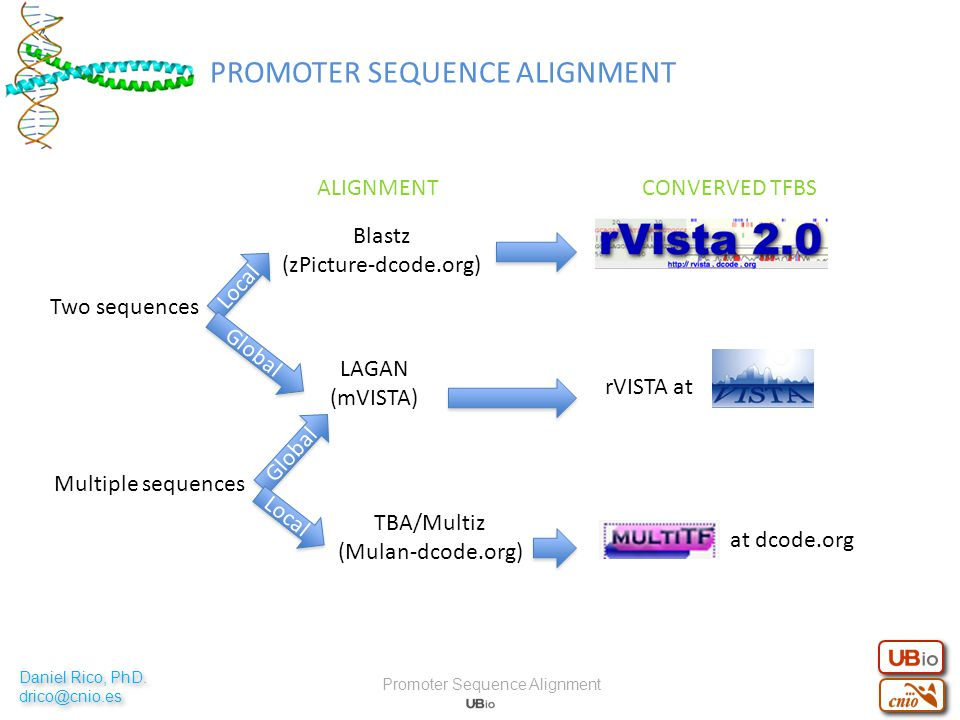 Two sequences Multiple sequences Local Blastz (zPicture-dcode.org) ALIGNMENTCONVERVED TFBS LAGAN (mVISTA) Global TBA/Multiz (Mulan-dcode.org) Local rVISTA at at dcode.org PROMOTER SEQUENCE ALIGNMENT Promoter Sequence Alignment Daniel Rico, PhD.