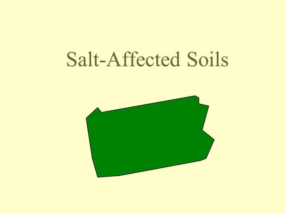 Salt-Affected Soils