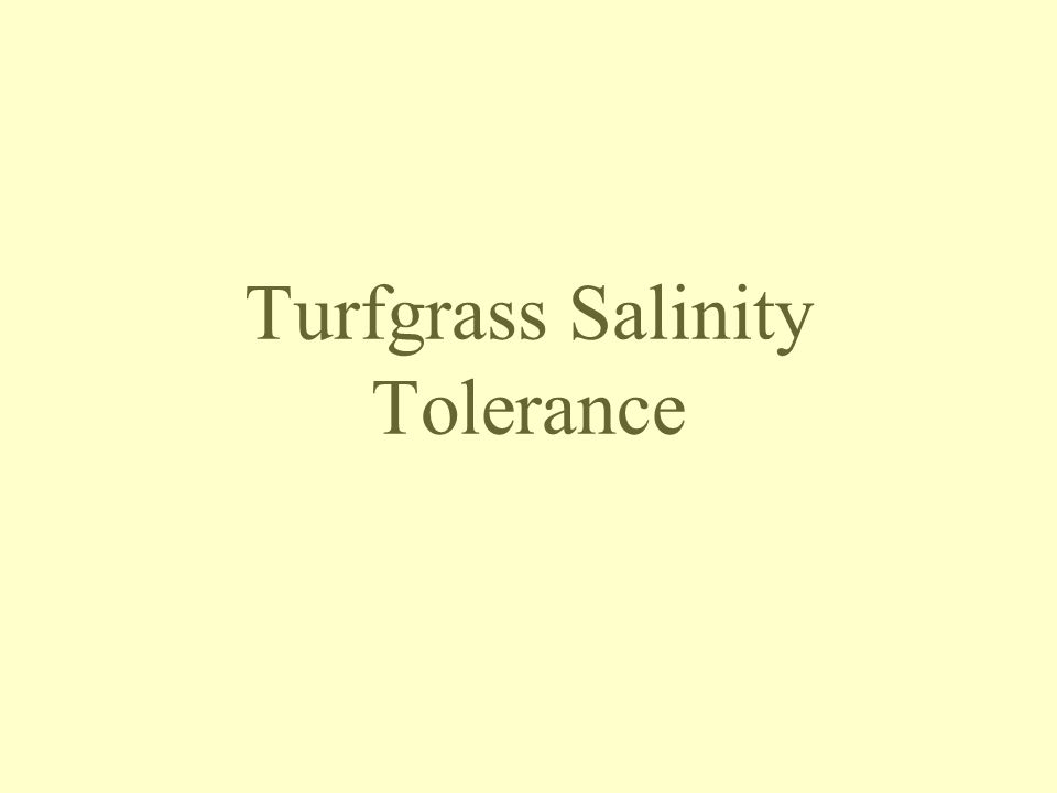 Turfgrass Salinity Tolerance