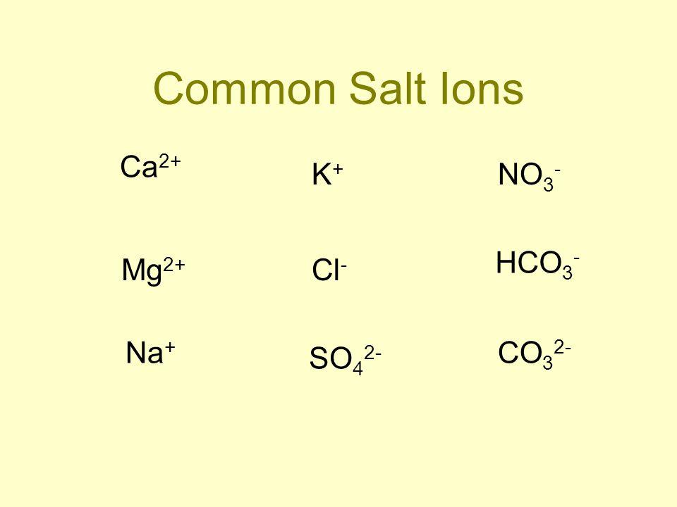 Common Salt Ions Ca 2+ K+K+ NO 3 - Mg 2+ HCO 3 - Na + SO 4 2- CO 3 2- Cl -