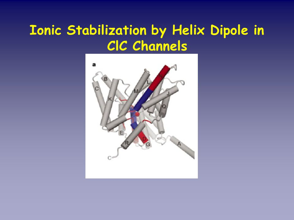 Ionic Stabilization by Helix Dipole in ClC Channels