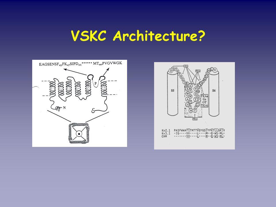 VSKC Architecture?