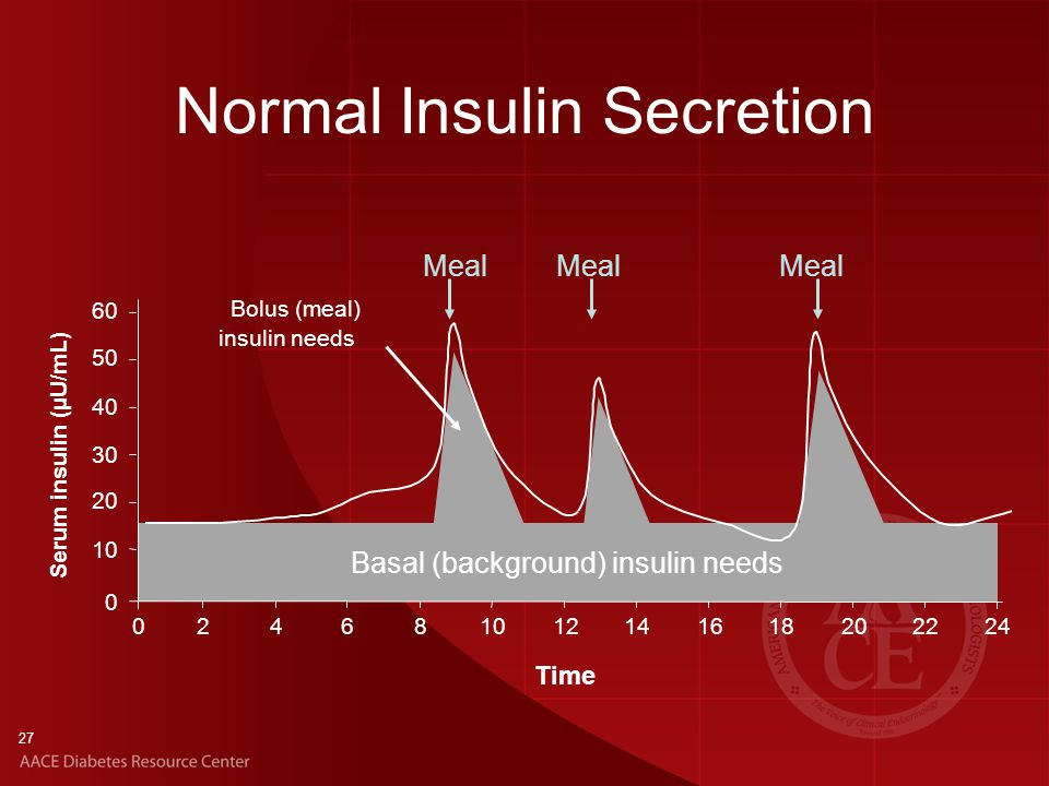27 Basal (background) insulin needs Normal Insulin Secretion 0 10 20 30 40 50 024681012141618202224 Serum insulin (µU/mL) Time Meal Bolus (meal) insulin needs 60