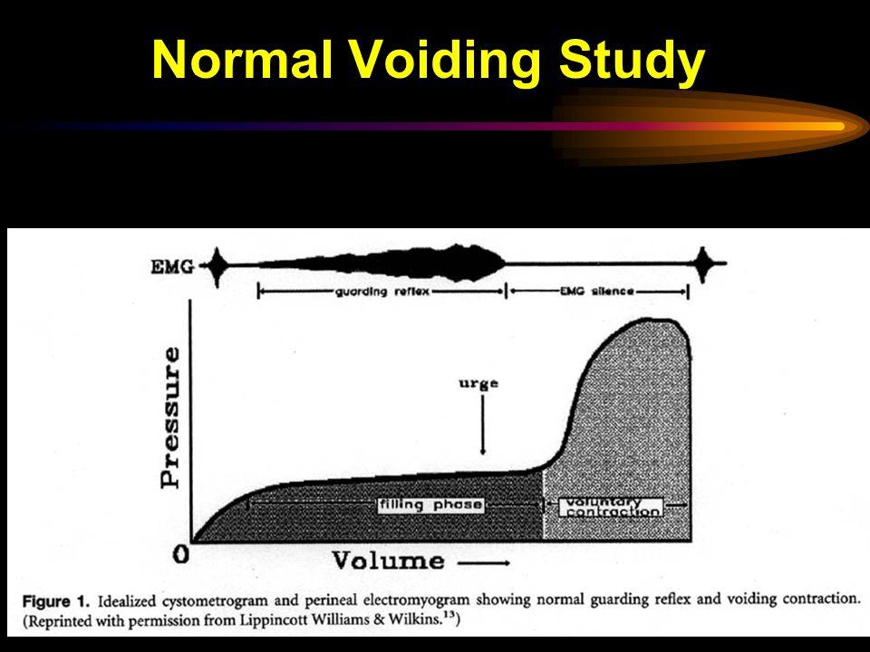 Normal Voiding Study