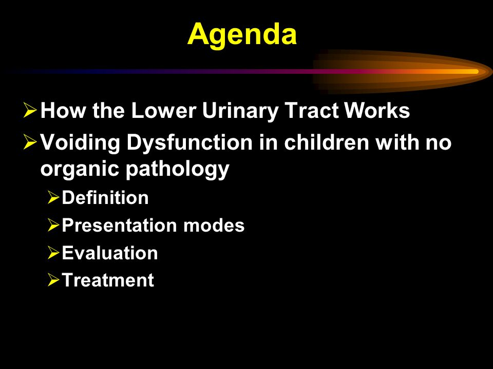 Agenda  How the Lower Urinary Tract Works  Voiding Dysfunction in children with no organic pathology  Definition  Presentation modes  Evaluation  Treatment