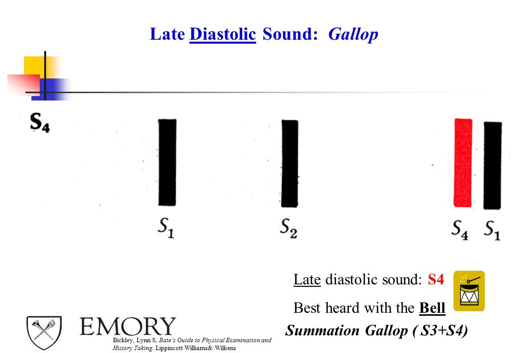 Late Diastolic Sound: Gallop Late diastolic sound: S4 Best heard with the Bell Bickley, Lynn S, Bate's Guide to Physical Examination and History Taking.