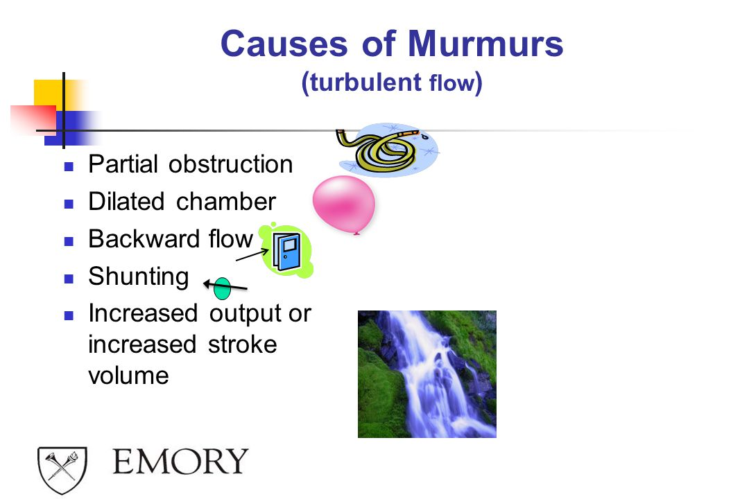 Causes of Murmurs ( turbulent flow ) Partial obstruction Dilated chamber Backward flow Shunting Increased output or increased stroke volume