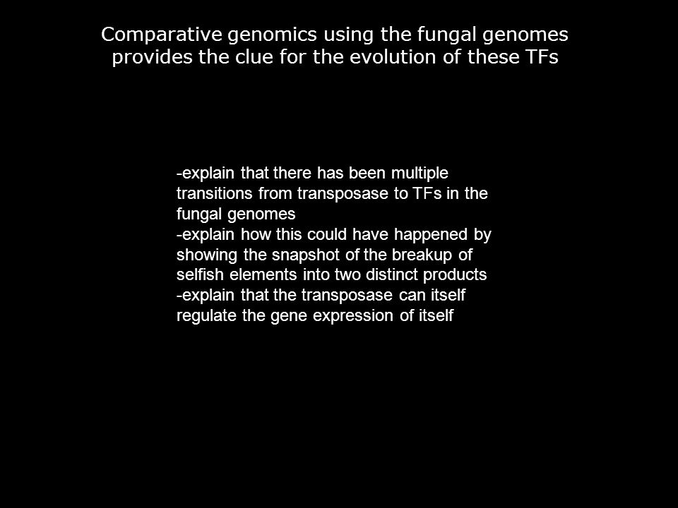 Comparative genomics using the fungal genomes provides the clue for the evolution of these TFs -explain that there has been multiple transitions from transposase to TFs in the fungal genomes -explain how this could have happened by showing the snapshot of the breakup of selfish elements into two distinct products -explain that the transposase can itself regulate the gene expression of itself
