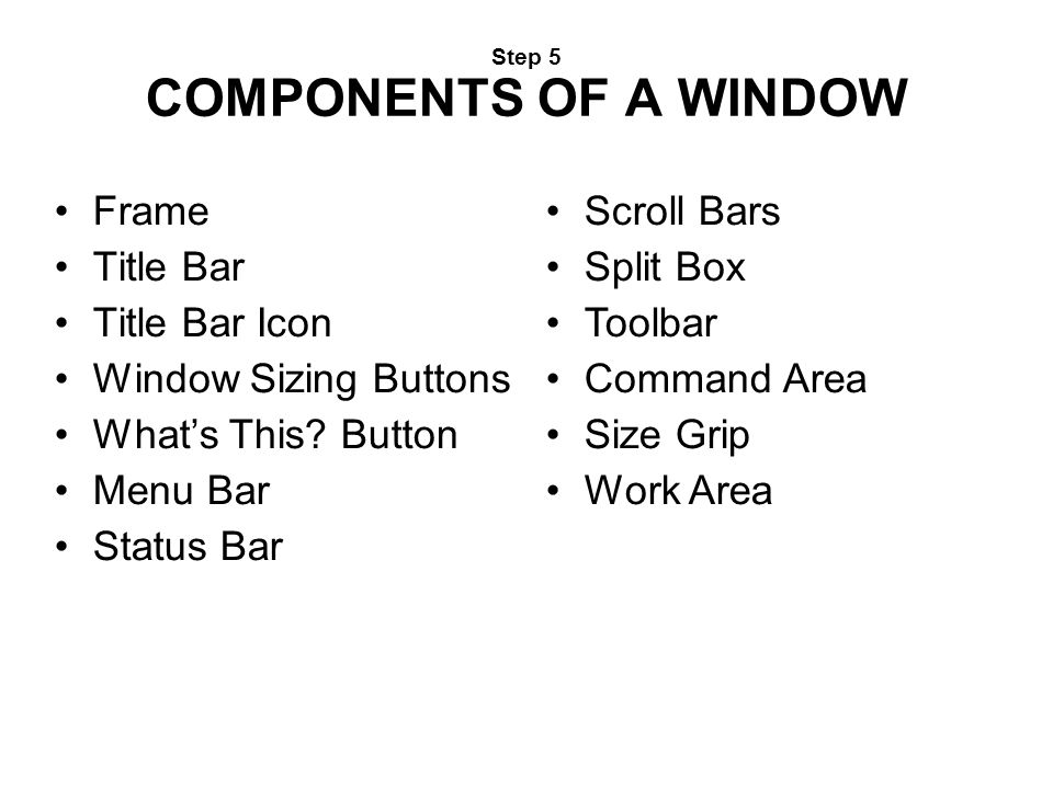 Step 5 COMPONENTS OF A WINDOW Frame Title Bar Title Bar Icon Window Sizing Buttons What's This? Button Menu Bar Status Bar Scroll Bars Split Box Toolb