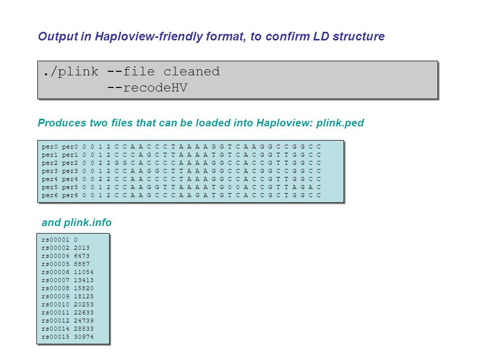 ./plink --file cleaned --recodeHV./plink --file cleaned --recodeHV Output in Haploview-friendly format, to confirm LD structure per0 per0 0 0 1 2 C C